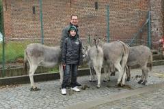 Boekje 2012  Pony 2o
