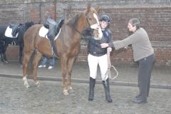 Paarden 2012  1 jpg